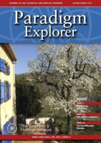 Paradigm Explorer – Issue  132