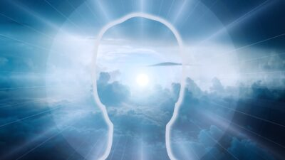 Consciousness, Cognition and Behavior